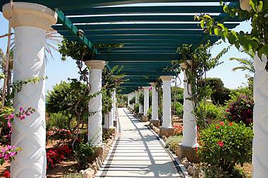 Rhodes - Kallithea